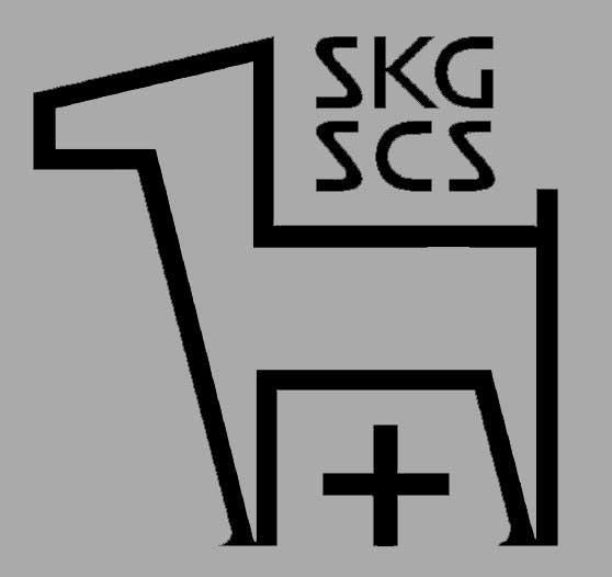skg_fdf